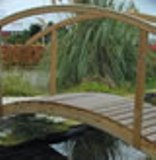 Pond Bridges