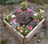 Ponderosa Multi-Compartment Planter