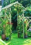 Forest Rose Arch 286x168x76cm