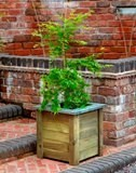Forest Cambridge Planter 50x50
