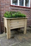 Forest Deep Root Planter