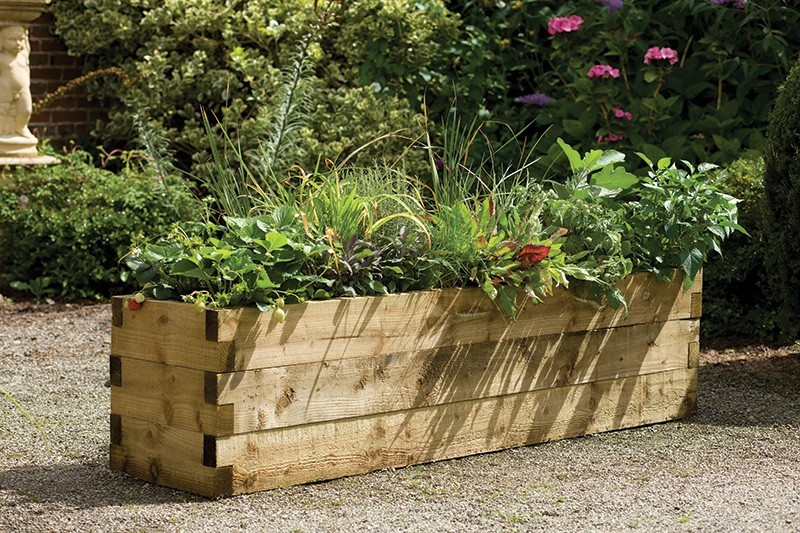Forest Caledonian Planter